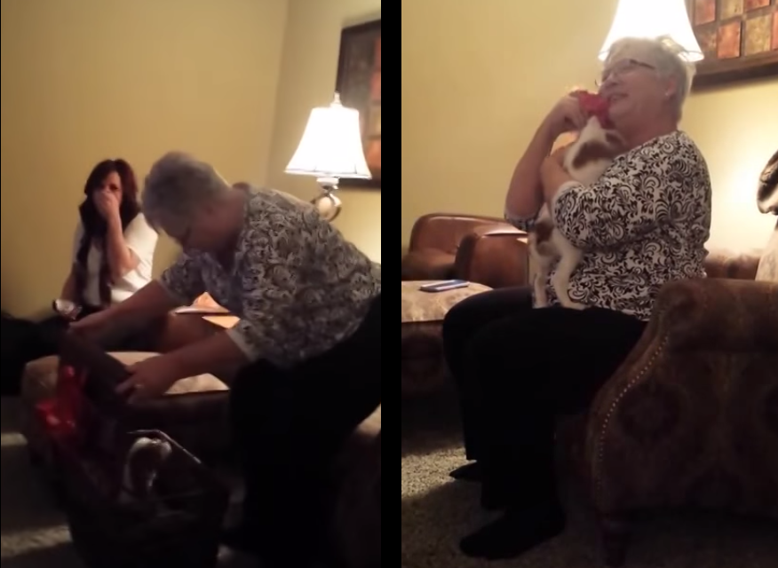 Grandma Gets a Puppy for Christmas and Goes Absolutely Crazy Over It.