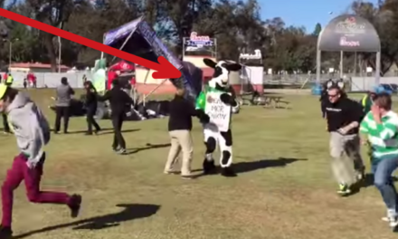 Mini Tornado Almost Kills Chick fil A Cow at the Rose Bowl.