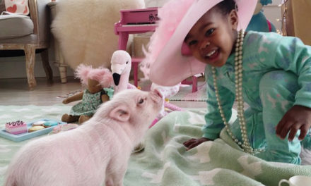 12 Adorably Cute Pictures of a Girl and Her Pig.