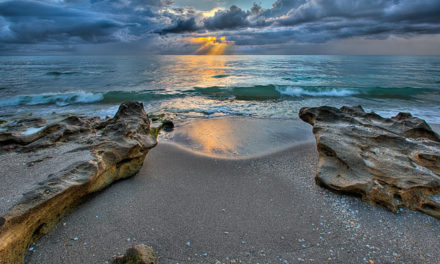 3 Must See Attractions When Visiting Jupiter, FL