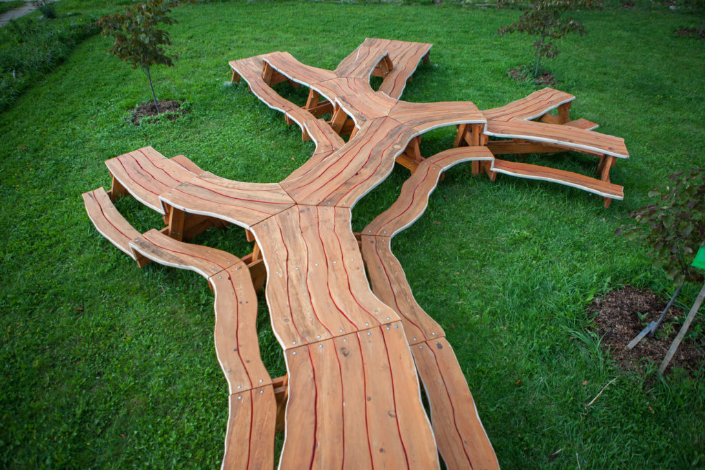 Cartoon Picnic Table Tree Shaped Picnic Table