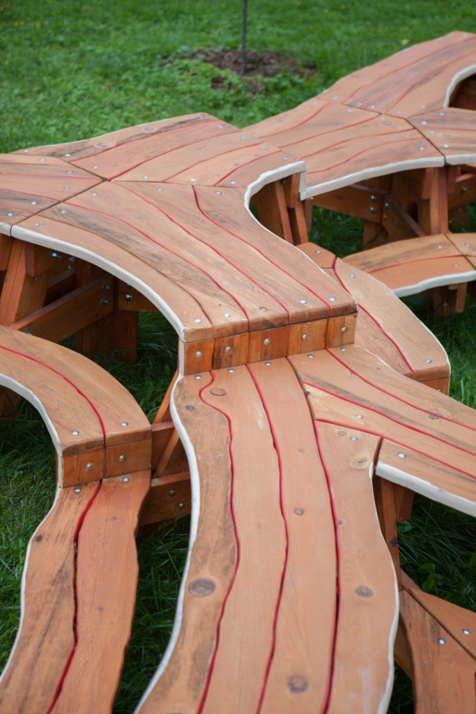 tree-picnic-table3