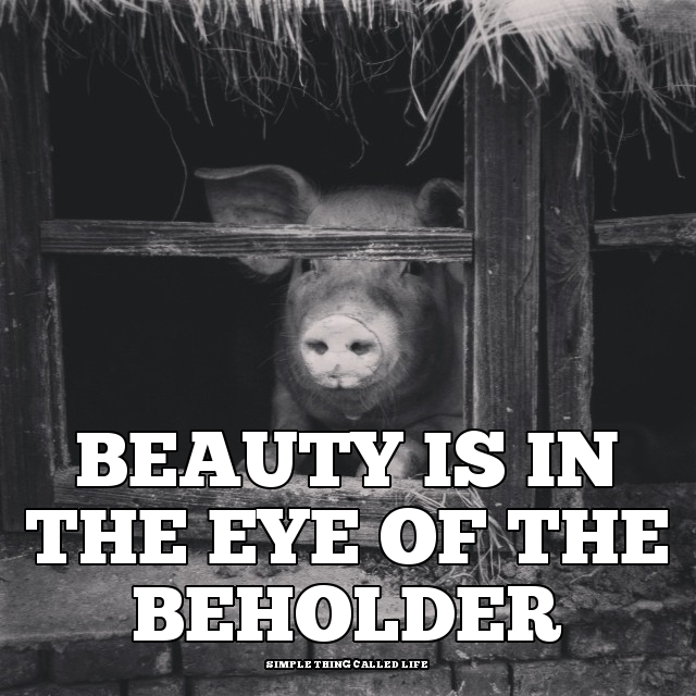 beauty is in the eye of the beholder quote simple thing called beauty eye of beholder quote