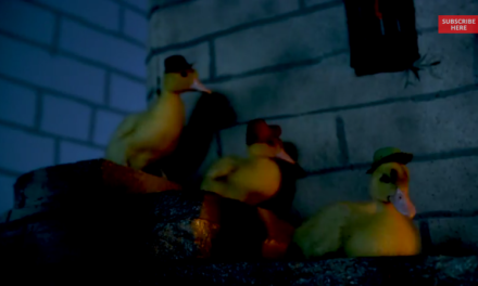 Real ducks recreate Ducktales