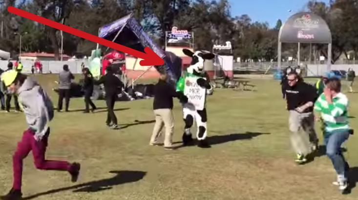 Mini Tornado Almost Kills Chick fil A Cow at the Rose Bowl.