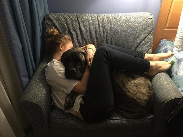 Dying dog takes a heartbreaking bucket list adventure