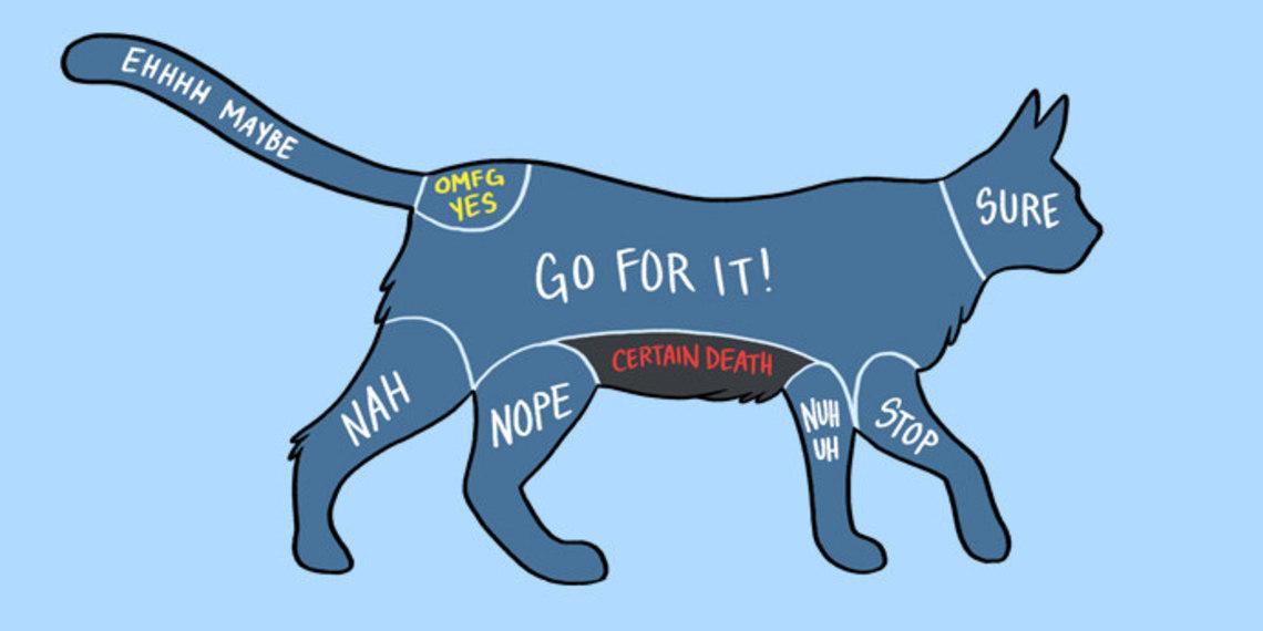02 - How To Pet Animals