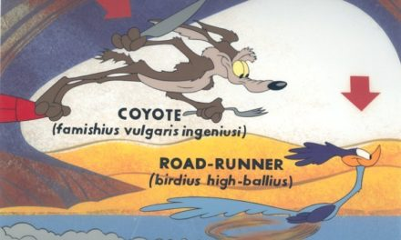 9 Rules for Road Runner and Wild E. Coyote Cartoon.