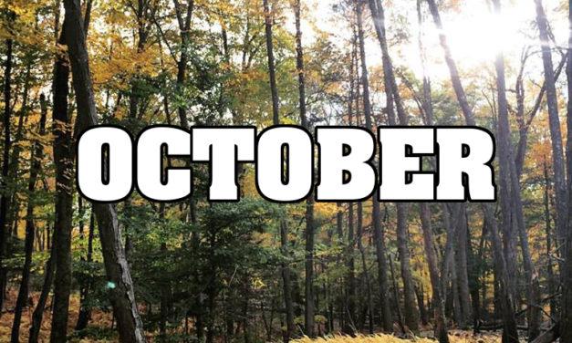 October's Daily Devotionals