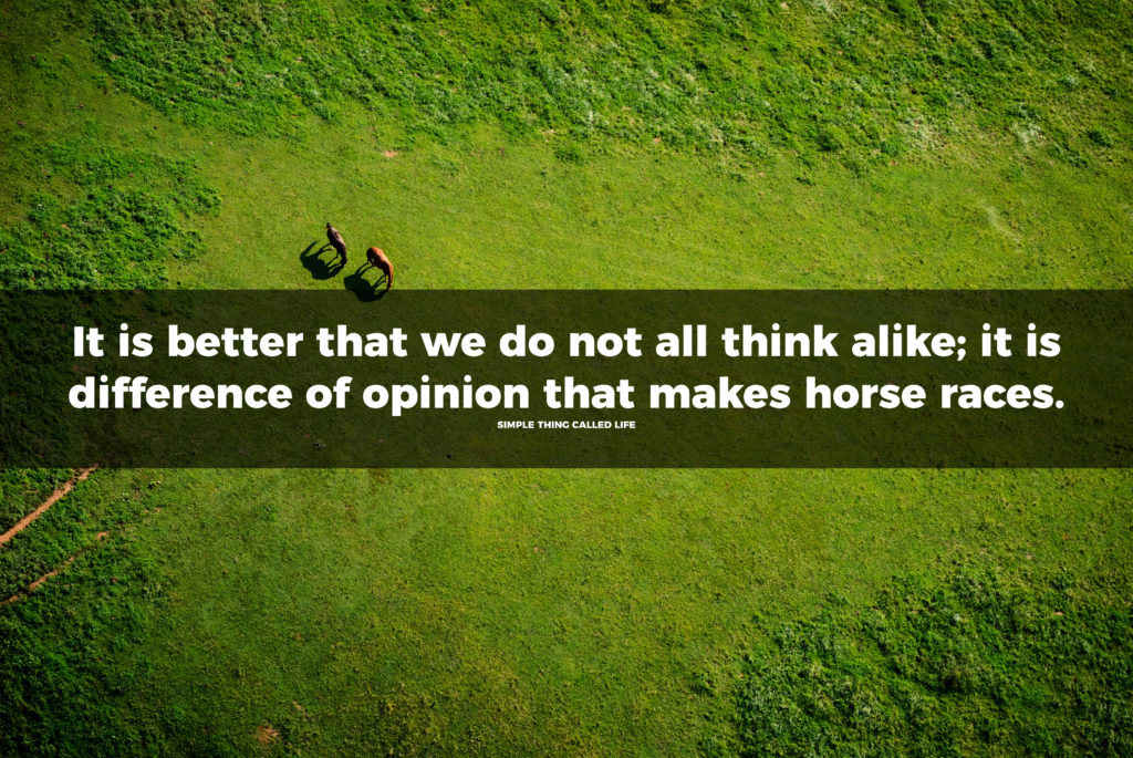 """A picture of horses in a field with the quote """"It is better that we do not all think alike; it is difference of opinion that makes horse races."""""""